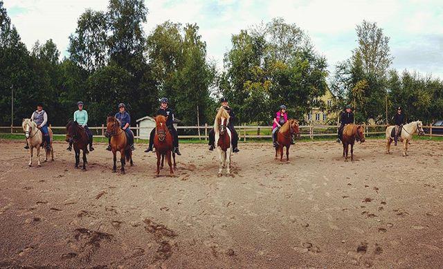 Islandshästridning med jobbet!  #häst islandshäst #kyrkekvarn #bästajobbet