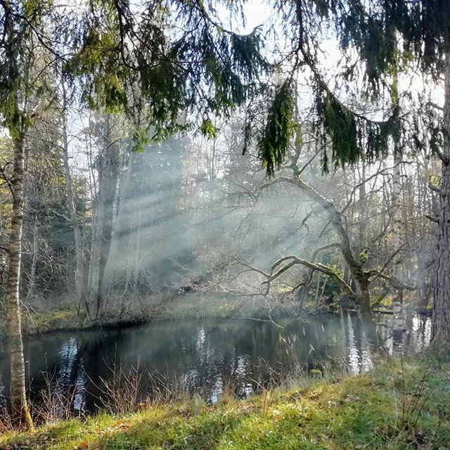 Schweden im Herbst. Stimmung am Fluss Tidan in Kyrkekvarn. #kyrkekvarn #schweden #herbst