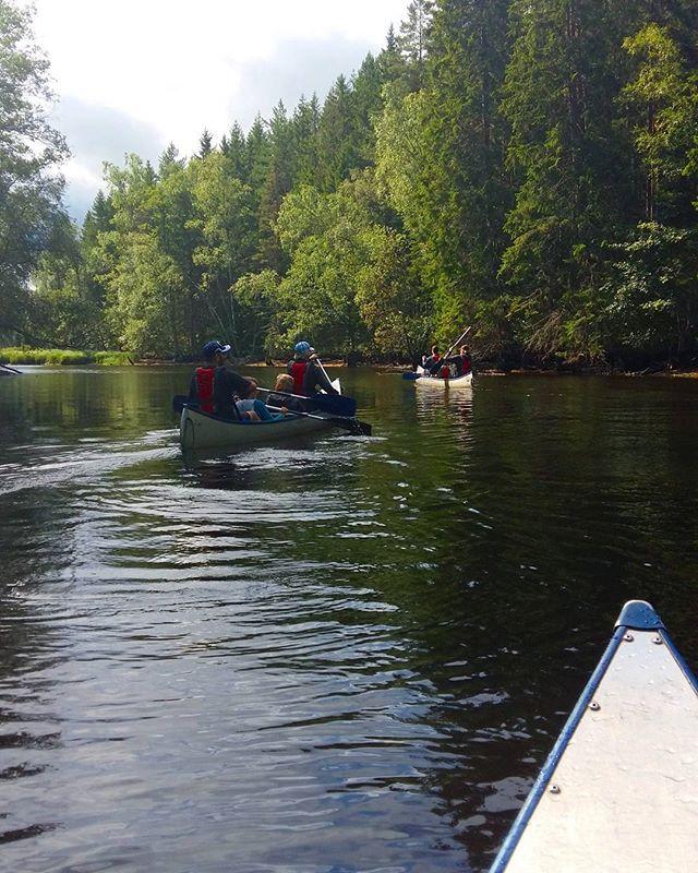 Spent my day in a canoe!  #stråken #paddlakanot #canoeing #beautiful #nature #naturelovers #kyrkekvarn