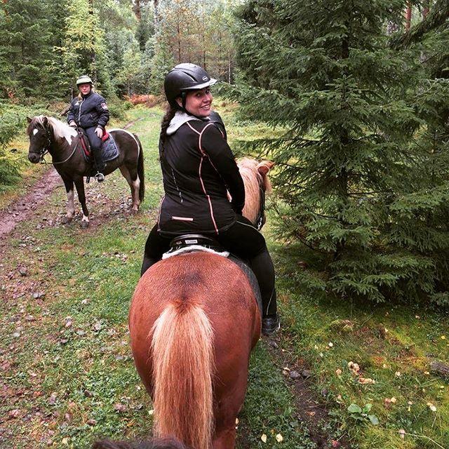 Utmaningarna med djur fortsätter på hemmaplan #islandshäst #Kyrkekvarn #utmaning #kul #häst #personalföreningen #vänner #galoppera
